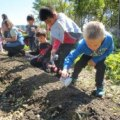Battery Urban Farm: A Real Working Farm in Downtown Manhattan with Pick-Your-Own Veggies & Educational Programs for Kids
