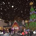 Tree Lighting Celebrations to Kick Off the Holiday Season in Westchester