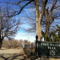 Fort Greene Clinton Hill with Kids: Top 35 Things to Do for NYC Families