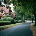 Forest Hills Kids Neighborhood Guide
