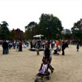 Fort Greene & Clinton Hill Kids Neighborhood Guide