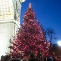 Christmas Eve with NYC Kids 2014: 12 Festive Ways for Families to Celebrate