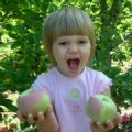 Apple Picking Farms in New Jersey and New York: Where to Pick Your Own Apples Near NYC