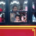 Bronx Culture Trolley: A Fun and Free Way to Explore the South Bronx