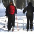 Cross Country Ski Day Trip With Your Family in Hartford County: Winding Trails in Farmington
