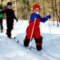 Cross-Country Skiing Near NYC: Where to Nordic Ski with Kids