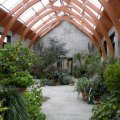 Indoor Gardens in Boston and Beyond