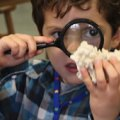 Science Camps in Connecticut (Fairfield County)