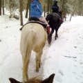 All-Inclusive Winter Family Resorts: Ridin-Hy Ranch