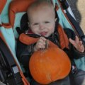 Top Pumpkin Picking Farms for Families in New Jersey