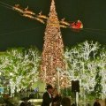 Tree Lighting Celebrations That Kick off the Holidays around LA