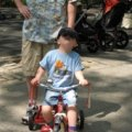 Best Places for Families to Bike Ride in Manhattan