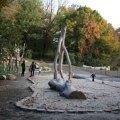 Prospect Park's New Natural Play Area: Climb Trees, Sit on Trunks & Commune with Nature