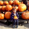 Long Island Kids' Activities Halloween Weekend October 31-November 2: Spooky Fest, Trick or Treating, Parties & Harvest Hoedown