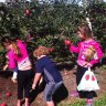 Top 10 Fun Things to do with Kids in the Hamptons & North Fork in the Fall