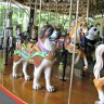Carousel for All Children in Willowbrook Park