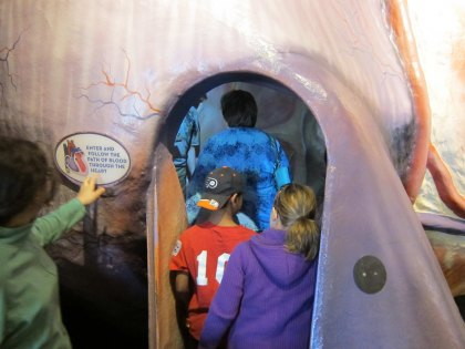 Science and Natural History Museum Day Trips