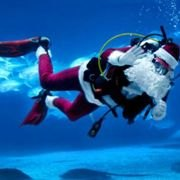 Mostly Free & Fun Things To Do With NJ Kids This Weekend Dec 22-23: Scuba Santa, Country Christmas, Holiday Sing & More!