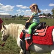 Mostly Free & Fun Things To Do With NJ Kids This Weekend May 4-5: Scavenger Hunt, Pony Rides, Dino Day & More!