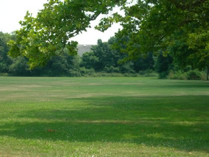 7 Perfect Picnic Places on Long Island