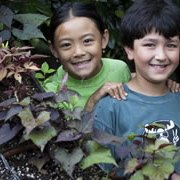 Farm-to-table: Hands-on Planting and Harvesting Summer Camps for NYC Kids