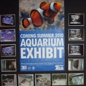 Sneak Peak: Turtle Back Zoo's New Aquarium Exhibit