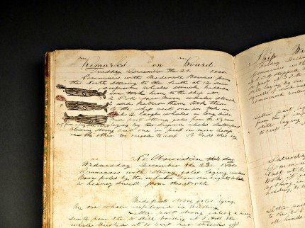 Artifacts are also on view, like this 19th-century logbook from a New Bedford whaling ship; photo courtesy of AMNH/D. Finnin