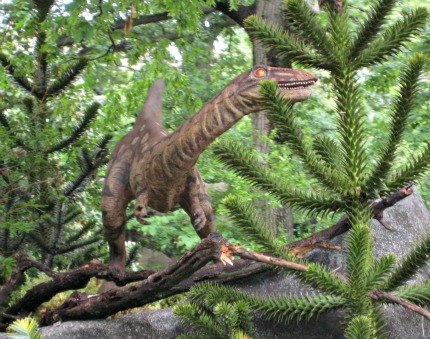 Keep an eye out: Tiny dinos are hidden in the trees