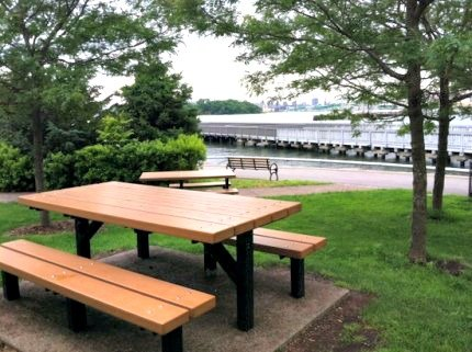 Picnic tables with amazing views