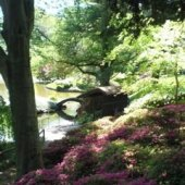 Things to do with kids: Highlights of the Brooklyn Botanic Garden for Kids