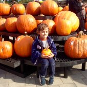 Things to do with kids: Long Island Kids' Activities Halloween Weekend October 31-November 2: Spooky Fest, Trick or Treating, Parties & Harvest Hoedown