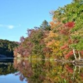 Things to do with kids: Fall Foliage Hikes for Families: 5 Kid-Friendly Trails in the Delaware Water Gap