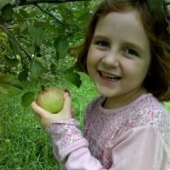Things to do with kids: New York Apple Picking and Fall Festivals