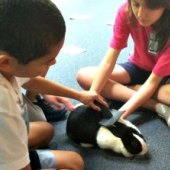 Things to do with kids: Animal Care Classes for NYC Kids: Feed, Care and Talk to the Animals