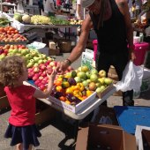 Things to do with kids: Browsing the SoWa Open Market with Kids: 20 Tips