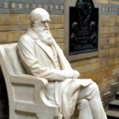 Things to do with kids: Celebrate Darwin Day: 5 Fun Ways for NYC Kids to Learn About Evolution