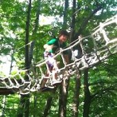 Things to do with kids: Day Trip to Catamount Aerial Adventure Park and Rockwell Museum in Great Barrington, MA