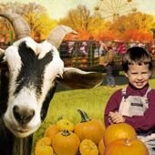Things to do with kids: Pumpkin Picking, Corn Mazes and Hayrides in New Jersey