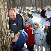 Things to do with kids: Maple Sugaring Day Trips Near New York City