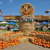 Things to do with kids: New England Pumpkin Patches with Bonus Fun for Families