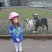 Things to do with kids: New Jersey Playgrounds with Free Zoos and Farm Animals