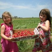 Things to do with kids: Get Locavore at U-Pick Farms in New Jersey