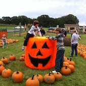 Things to do with kids: Pick Your Own Pumpkin Patches in Western Connecticut