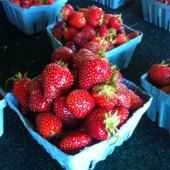 Things to do with kids: Where to Take Your Kids Strawberry Picking Near Boston