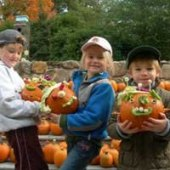 Things to do with kids: Pumpkin Patches in Eastern Connecticut