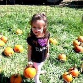 Things to do with kids: Pumpkin Picking with Kids in Hartford County, CT