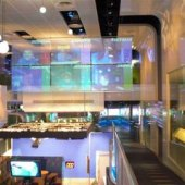 Things to do with kids: Sony Wonder Technology Lab