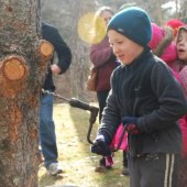 Maple Sugaring Exploration
