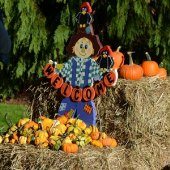 St. John's Lutheran Annual Pumpkin Patch