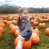 Things to do with kids: Mostly Free & Fun Things To Do  With NJ Kids This Weekend Oct 4-5: Pumpkin Festivals, Harvest Hayride, Book Bonanza & More!